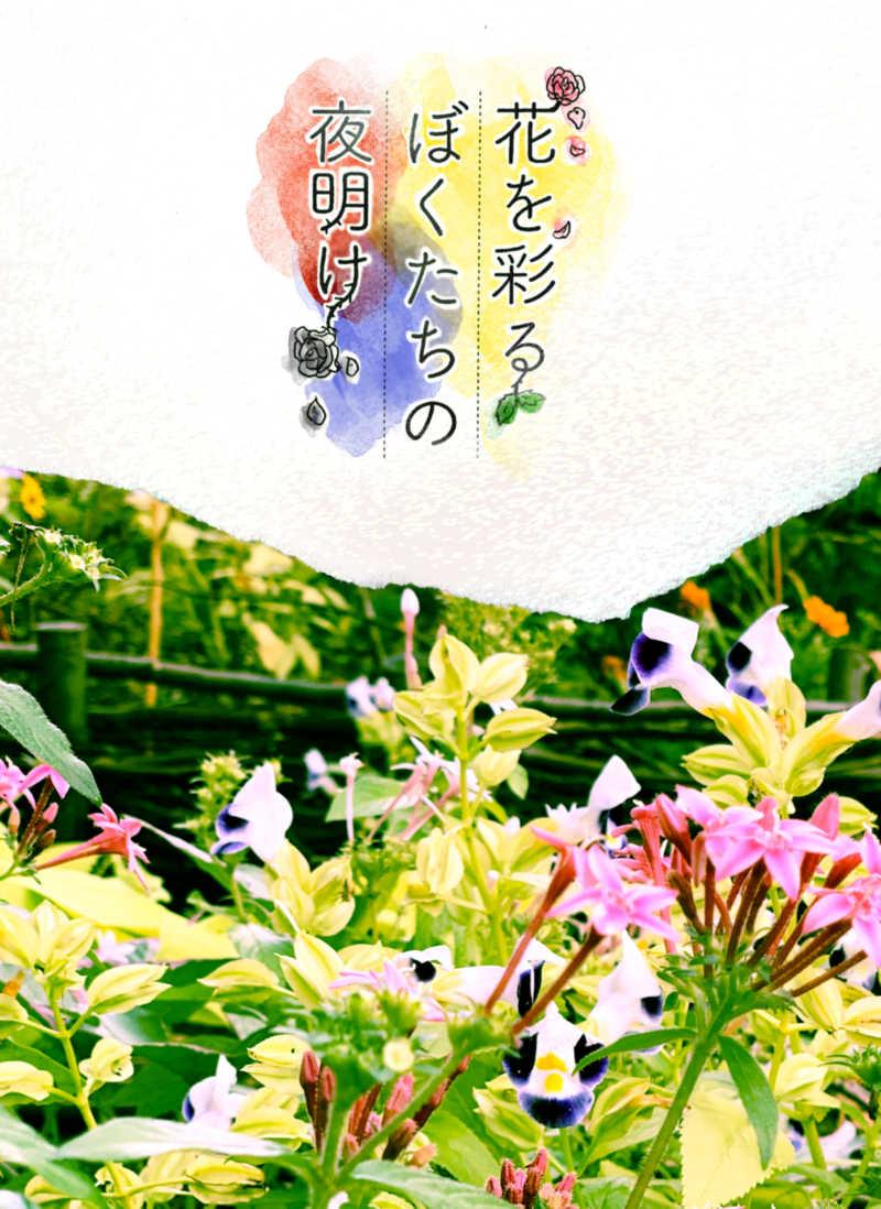 花を彩るぼくたちの夜明け