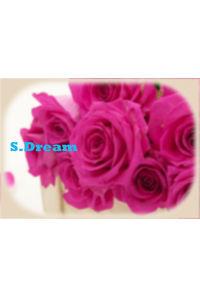 S.Dream