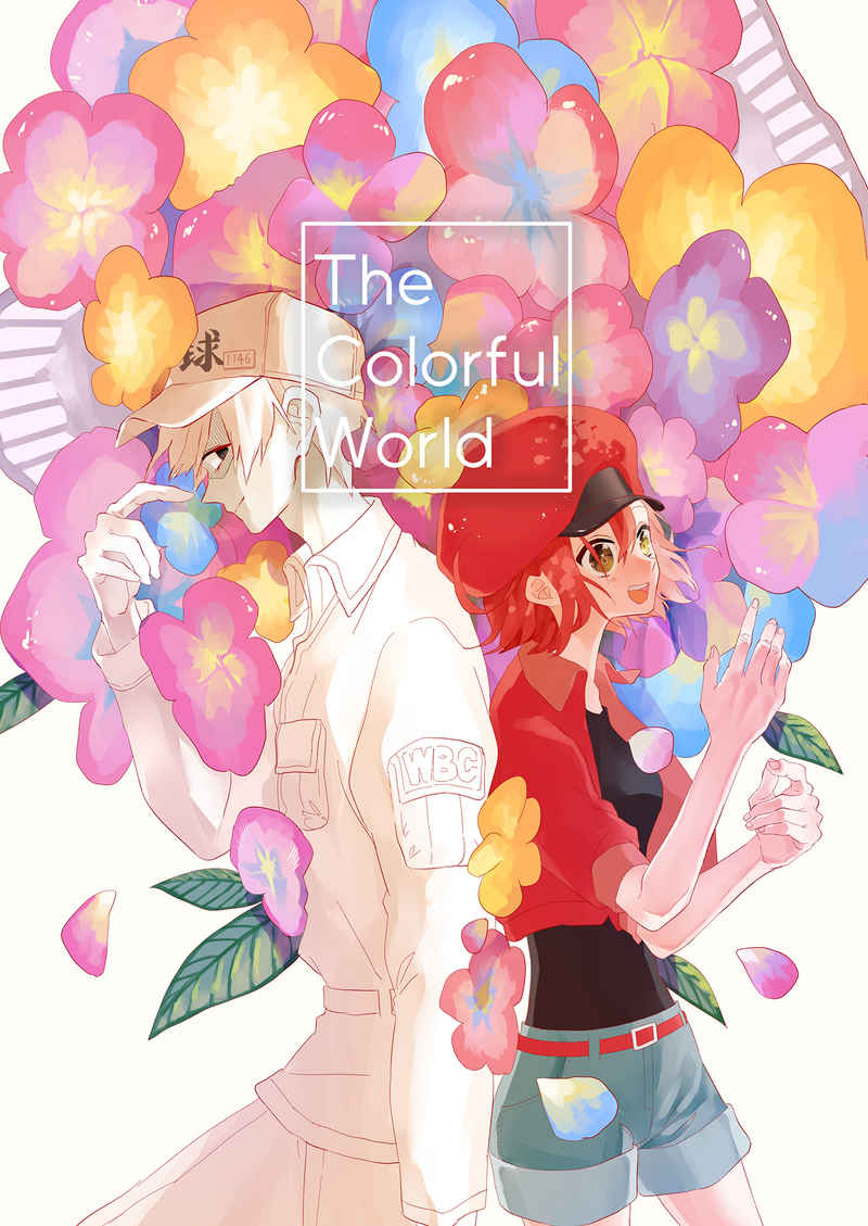 The Colorful World