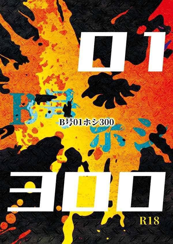 B号01ホシ300
