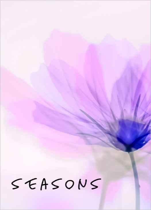 Seasons [UnKnown(まめ)] 刀剣乱舞