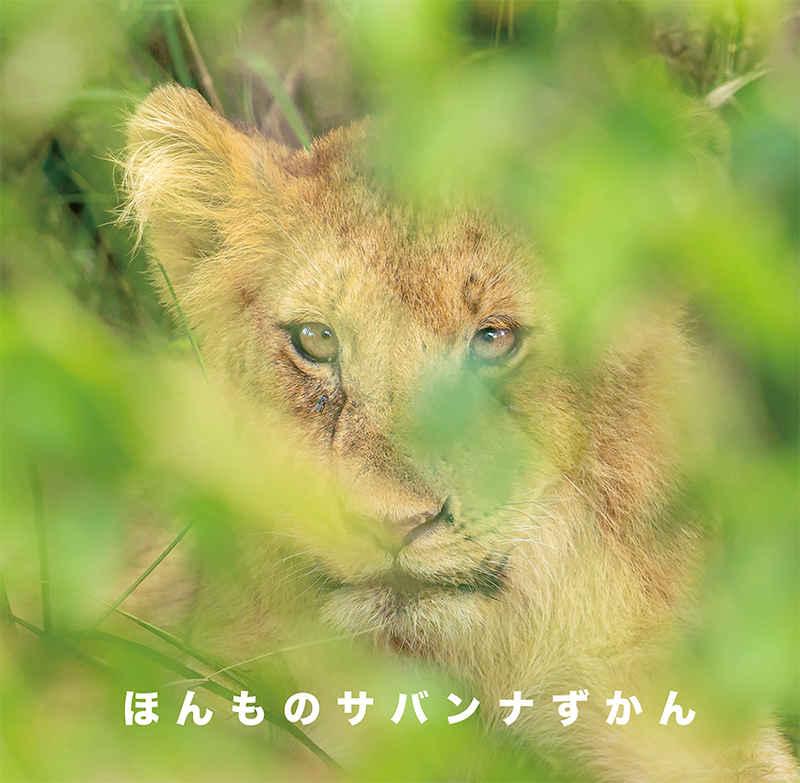 ほんものサバンナずかん [房総旅団(chawan)] 動物