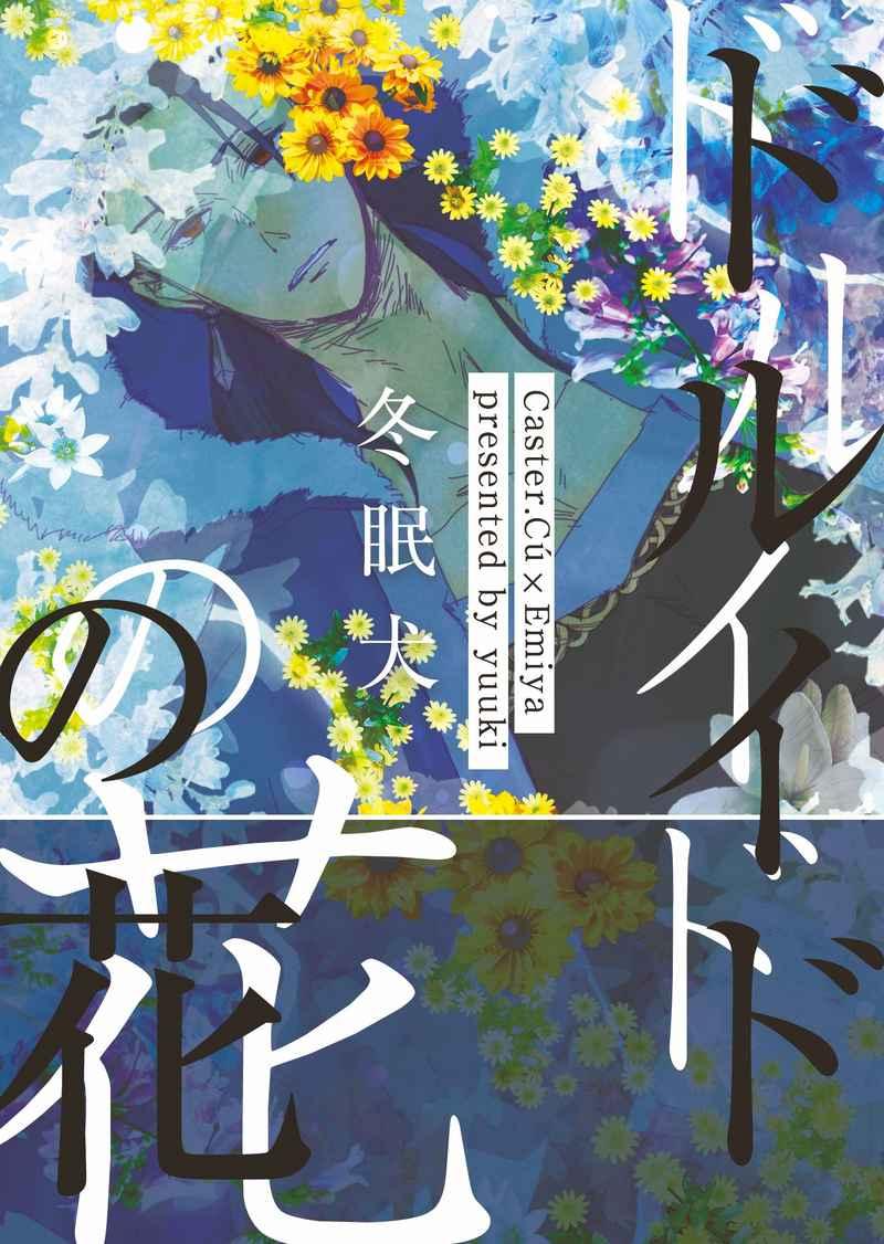 ドルイドの花 [冬眠犬(侑城)] Fate/Grand Order