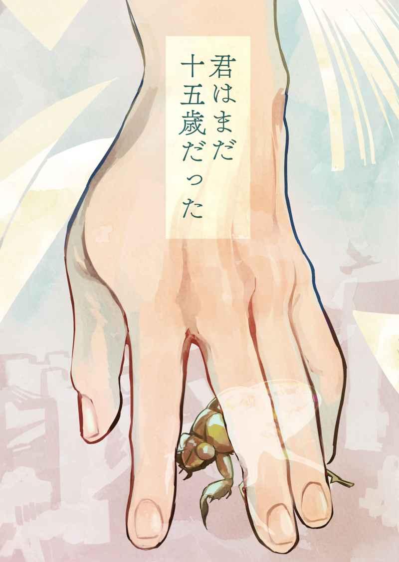 君はまだ十五歳だった [いやしけよごと(ことほぎ)] Fate/Grand Order