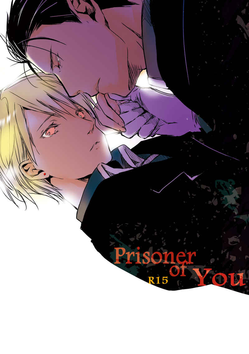 Prisoner of You [momo(星野ゆん)] 鋼の錬金術師