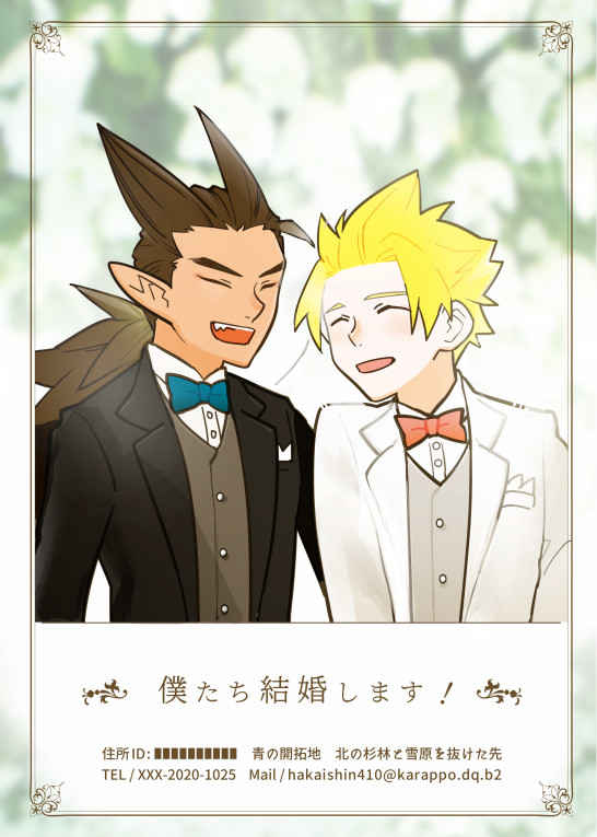 僕たち結婚します! [さんかくマカロン(コウノ)] ドラゴンクエスト