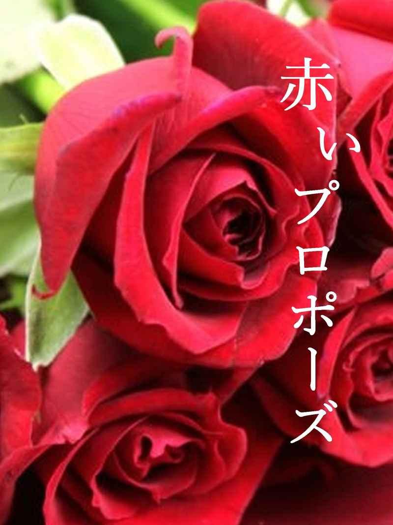 赤いプロポーズ [静かな星明かり(花恵)] ヒプノシスマイク