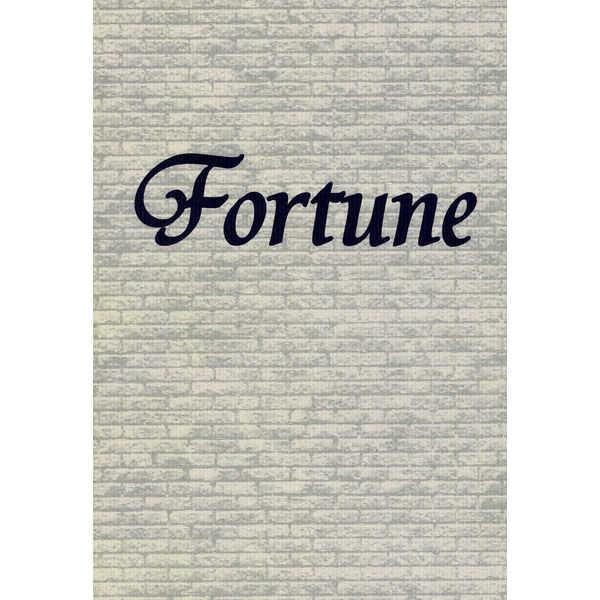 Fortune [Magic Flute(沖田 奈穂)] 新世紀エヴァンゲリオン