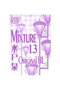 Mixture13