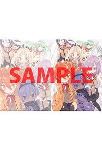 【特典】特製A4クリアファイル(Fate/Grand Order カルデアエース VOL.2)