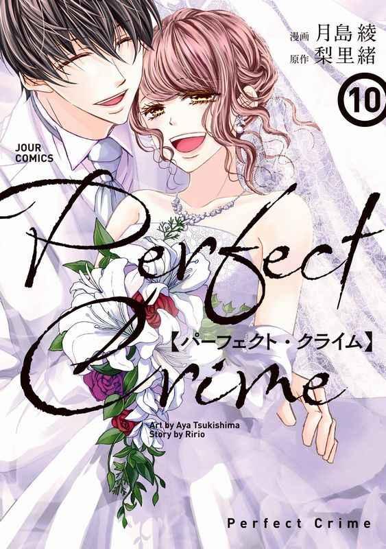 Perfect Crime 10