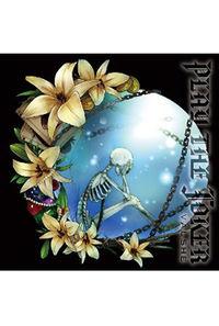 (CD)VALSHE 1stフルアルバム PLAY THE JOKER (通常盤)