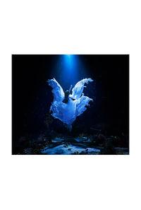 (CD)「残響のテロル」エンディングテーマ 誰か、海を。 EP(通常盤)/Aimer