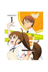 (DVD)WORKING!!! 1(完全生産限定版)