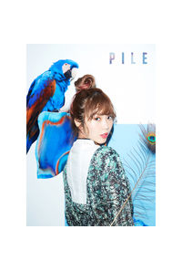 (CD)Pile2ndアルバム 「PILE」(初回限定盤B)(DVD付)