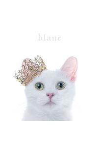 "(CD)BEST SELECTION ""blanc"" (通常盤)/Aimer"