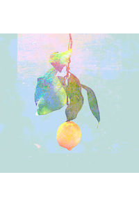 (CD)Lemon(映像盤) 【初回限定】/米津玄師