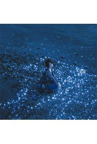 (CD)「ソードアート・オンライン オルタナティブ ガンゲイル・オンライン」オープニングテーマ 流星 / 約束(通常盤)/藍井エイル
