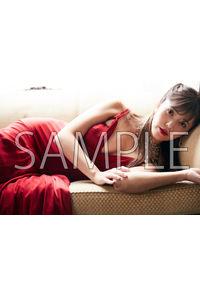 (CD)【特典】ブロマイド (The Best of Pile(初回限定盤A/B/通常版)/Pile)