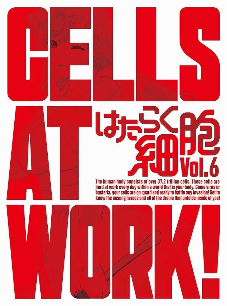 (BD)はたらく細胞 6(完全生産限定版)