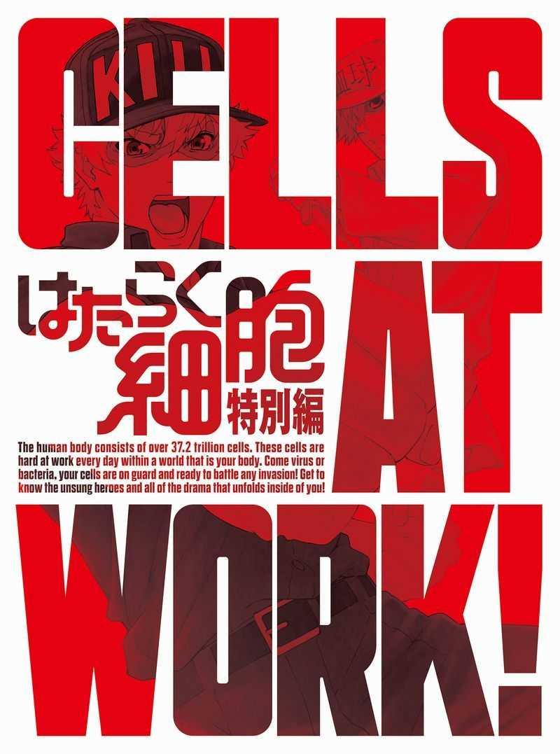 (BD)はたらく細胞 特別編 (完全生産限定版)