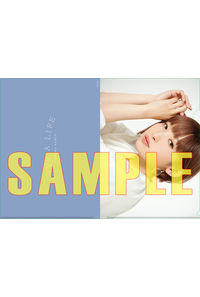 (CD)【特典】クリアファイル((CD)LIVE A LIFE(初回限定盤 CD+Blu-ray)(初回限定盤 CD+DVD)(通常盤)/南條愛乃)