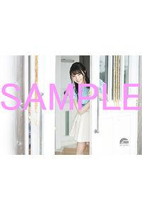 (CD)【特典】オリジナルブロマイド((CD)「荒ぶる季節の乙女どもよ。」エンディングテーマ ユメシンデレラ(初回生産限定盤/通常盤/期間生産限定盤)/麻倉もも)