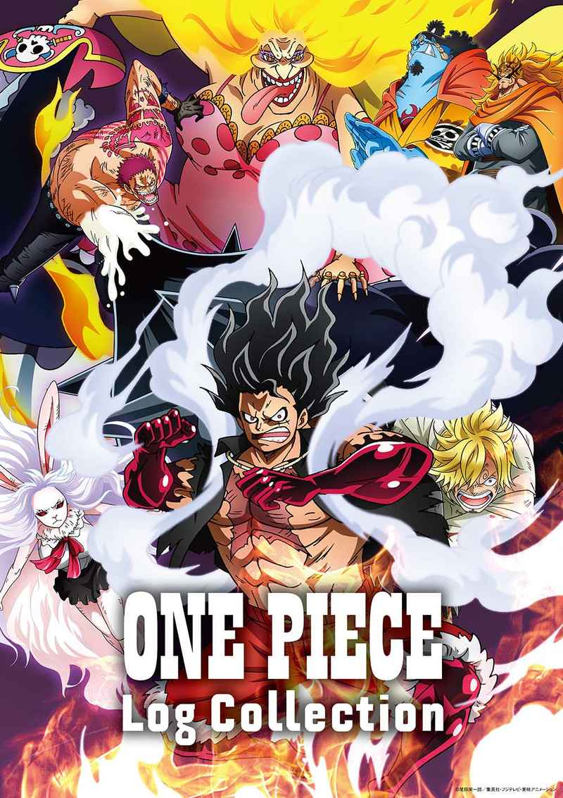 "(DVD)ONE PIECE Log Collection ""LEVELY"""