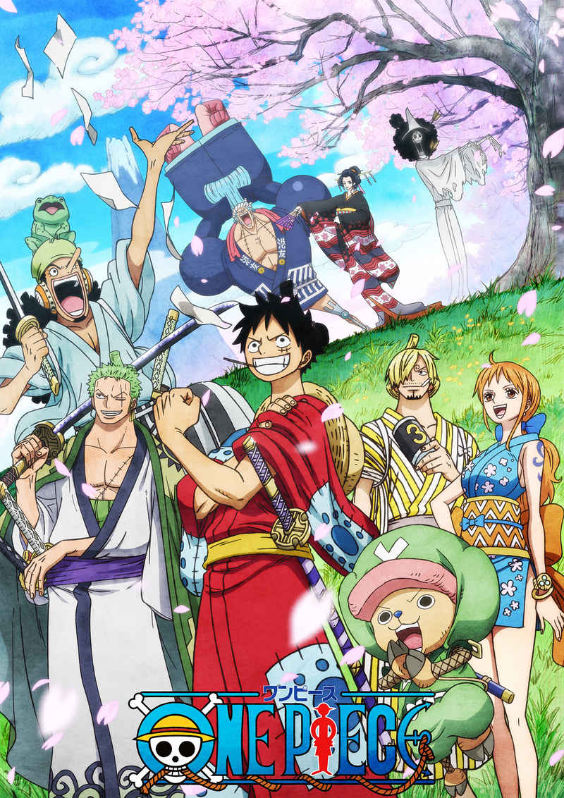 (BD)ONE PIECE ワンピース 20THシーズン ワノ国編 piece.19