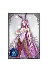ホビーストック Fate/EXTELLA A3クリアポスター メドゥーサ[魅惑のバニースーツ]