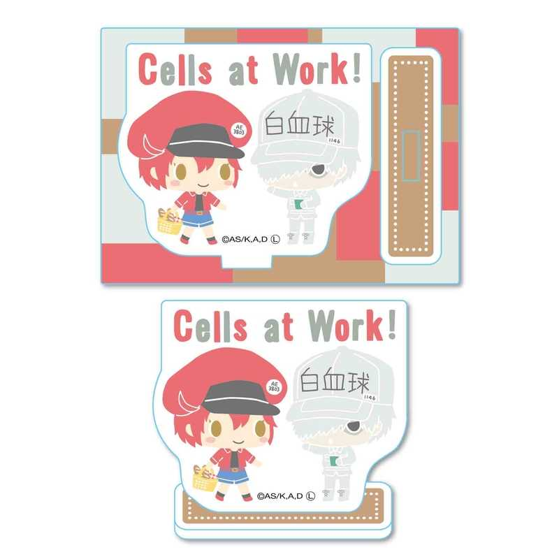 ベルハウス ミニスタンド はたらく細胞 -Design produced by Sanrio- 赤血球 & 白血球 (好中球)