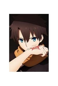 カーテン魂 Fate/Grand Order-絶対魔獣戦線バビロニア- まくらカバー(藤丸立香)