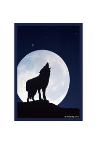 ブロッコリー キャラクタースリーブ・ミニ 「月下の孤影」